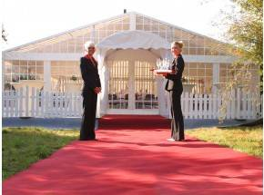 Roter Teppich 2m x 10m (BxL)